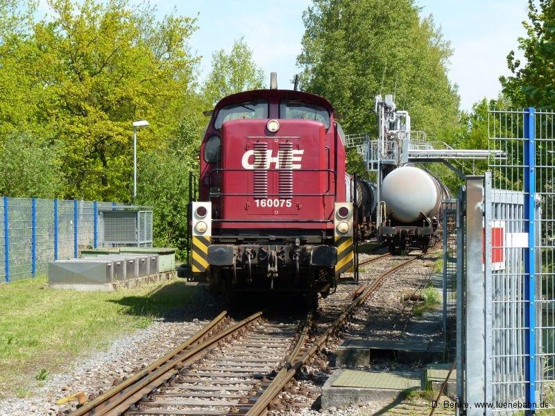 elbmarschbahngal002