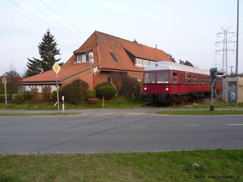 avlgdtsteinbeck008