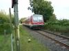 wendlandbahn002