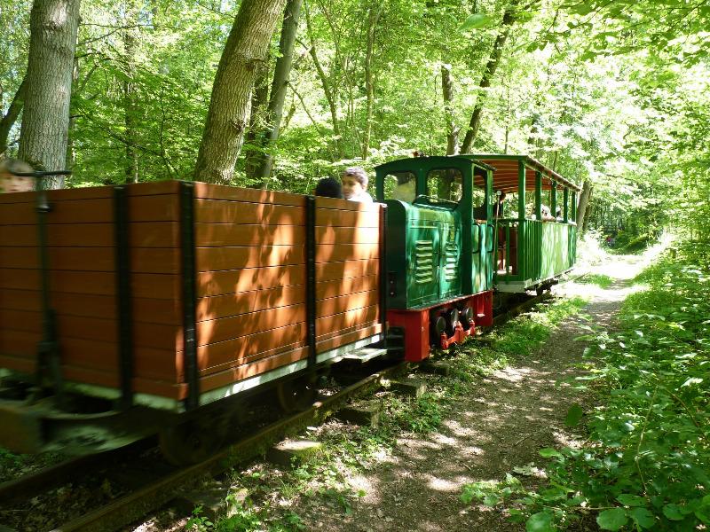 buchhorsterwaldbahn005