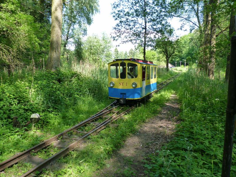 buchhorsterwaldbahn009
