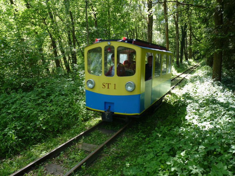 buchhorsterwaldbahn010