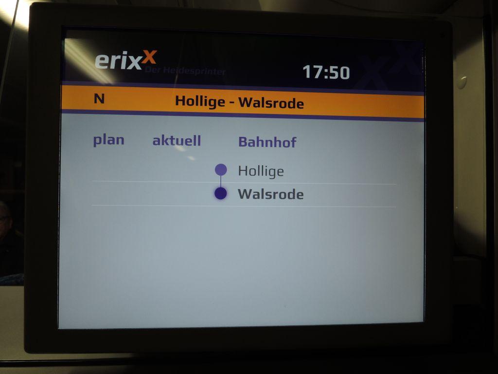 hollige009
